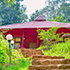 new year dandeli woodpecker homestay package